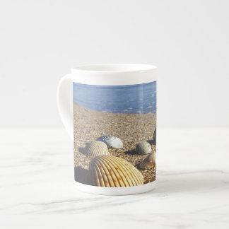 Cáscaras costeras de los E.E.U.U., la Florida, mar Taza De Porcelana