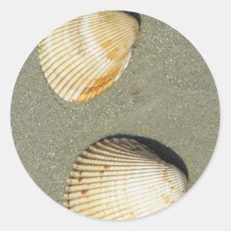 Cáscaras de concha de peregrino etiquetas redondas