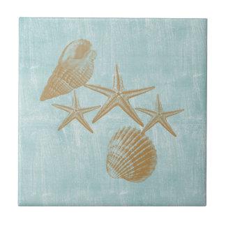 Cáscaras de la playa azulejo cuadrado pequeño