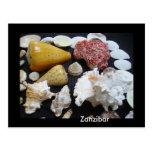 Cáscaras de Zanzíbar Postal