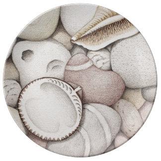 Cáscaras del berberecho y del espiral y placa de plato de cerámica