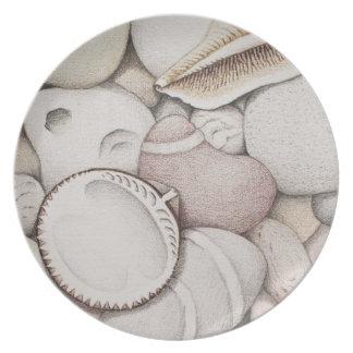 Cáscaras del berberecho y del espiral y placa de platos