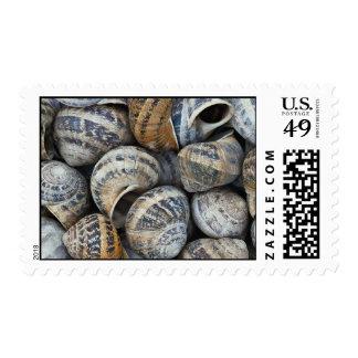 Cáscaras del caracol sellos postales