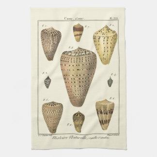 Cáscaras del cono del vintage toallas de cocina