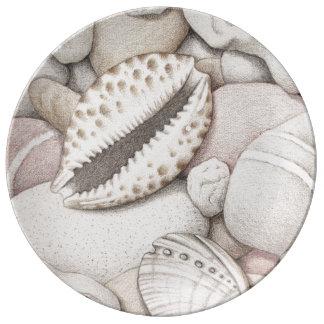 Cáscaras del Cowrie y del olmo y placa de la Platos De Cerámica