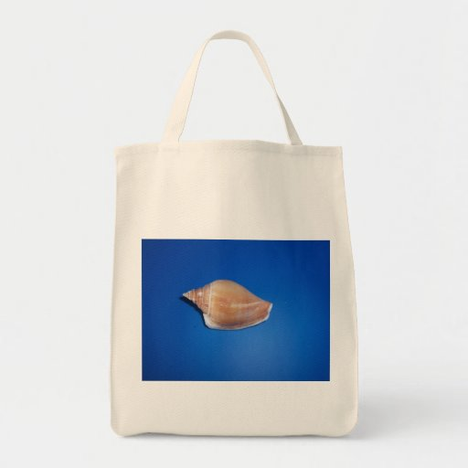 Cáscaras del mar bolsas