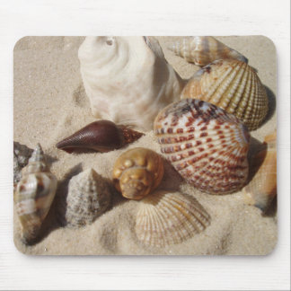 Cáscaras del mar, cáscaras del mar mouse pads
