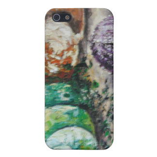 Cáscaras del mar de la pintura de Ana Hayes del as iPhone 5 Coberturas