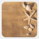 Cáscaras del mar en la arena pegatina cuadrada