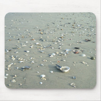 Cáscaras del mar en la playa imperial, California Alfombrilla De Ratones
