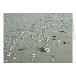 Cáscaras del mar en la playa imperial, California Tarjeta De Felicitación