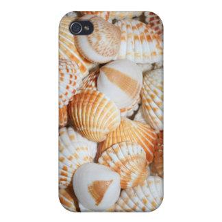 Cáscaras del mar iPhone 4/4S carcasa