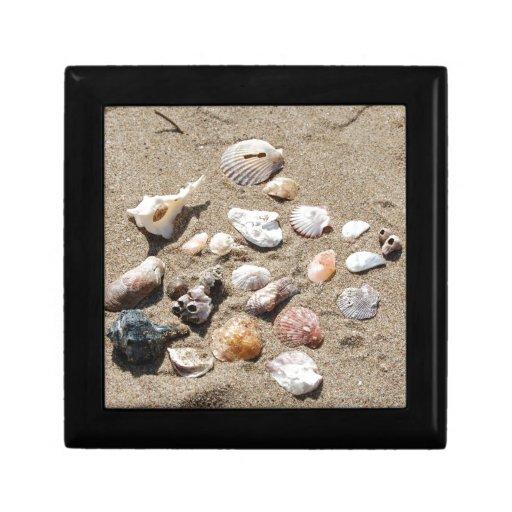 Cáscaras del mar joyero cuadrado pequeño