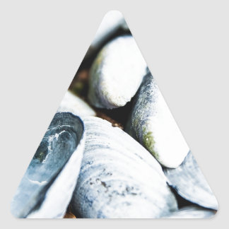 Cáscaras del mar calcomanías triangulos personalizadas