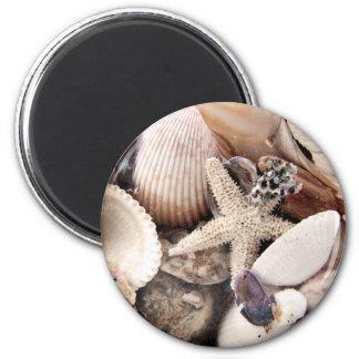 Cáscaras del mar por la orilla imán redondo 5 cm