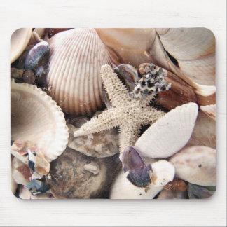 Cáscaras del mar por la orilla tapete de ratones