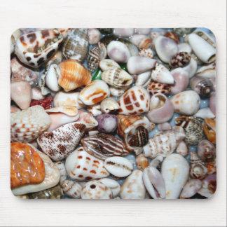 cáscaras del mar tapetes de ratón