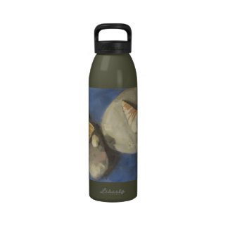 Cáscaras del mar y pintura de las piedras de la pl botellas de beber