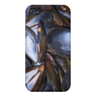 Cáscaras del mejillón iPhone 4/4S fundas