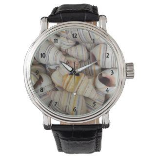 Cáscaras haitianas del caracol del árbol reloj de mano