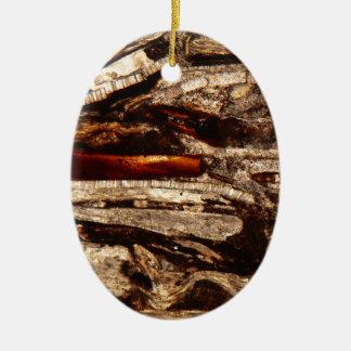 Cáscaras jurásicas debajo del microscopio adorno navideño ovalado de cerámica