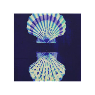 cáscaras románticas del mar del vintage del azul cuadro de madera