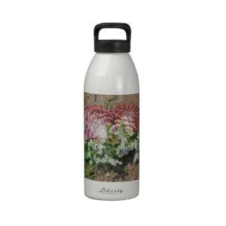 cáscaras rosadas y flores blancas en la arena de l botella de agua reutilizable