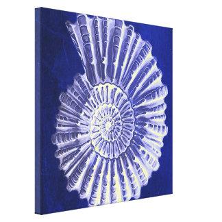 cáscaras rústicas del mar del vintage del azul de impresión en lienzo estirada