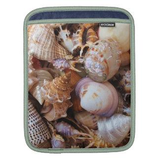 Cáscaras y estrellas de mar del mar Mediterráneo Mangas De iPad