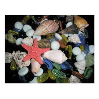 Cáscaras y rocas del mar tarjeta postal