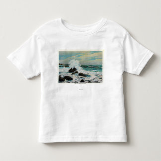 Casco Bay View of the Surf and Rocks T Shirts