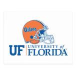 Casco de los cocodrilos de la Florida - derecho Tarjetas Postales