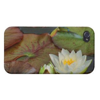 CASCO IPHONE4 NENÚFAR BLANCO iPhone 4/4S CARCASA