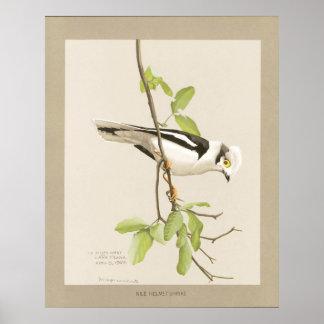Casco Shrike del Nilo Póster