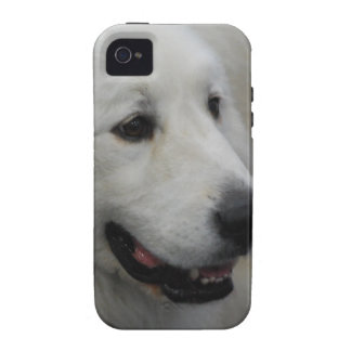 Case Vibe iPhone 4 Cases