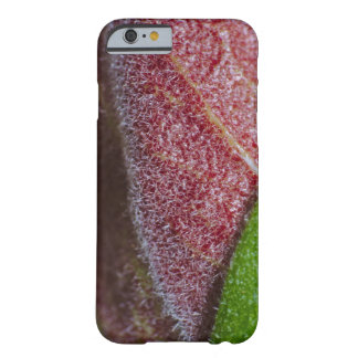 Case: Beauty of Life Barely There iPhone 6 Case