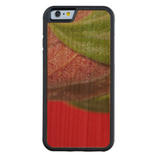 Case: Beauty of Life Carved Cherry iPhone 6 Bumper Case