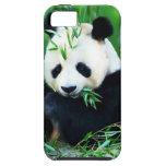 "CASE iPhone 5 ""PANDA "" iPhone 5 Case-Mate Protector"