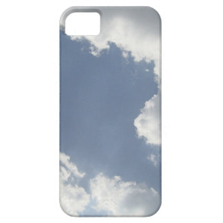 Case-Mate Barely There iPhone 5 5S Case