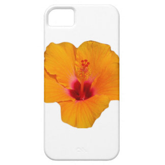Case-Mate Barely There iPhone 5 5S Case Hibiscus