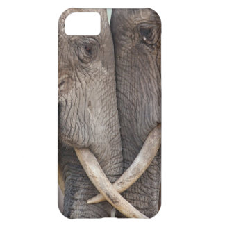 Case-Mate iphone 5 Barely There Universal Case iPhone 5C Cases