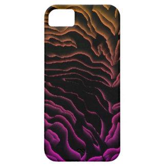 Case-Mate iPhone 5  Rainbow Zebra Design iPhone SE/5/5s Case
