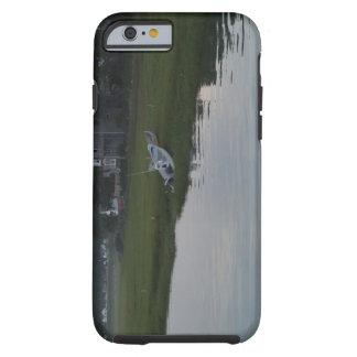 Case-Mate Tough iPhone 6/6s Case PHOTOGRAPH OF BOA