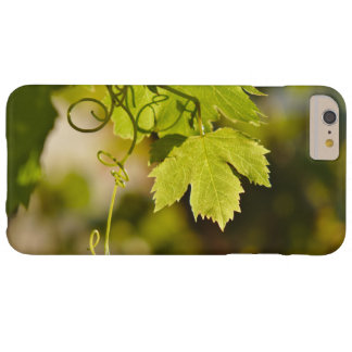 Case: Mediterranean Grape Vine Barely There iPhone 6 Plus Case