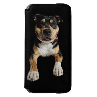 Case mobile devices - Idol Design