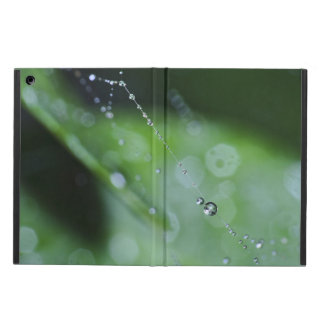 Case: Moment in the Forest Cover For iPad Air