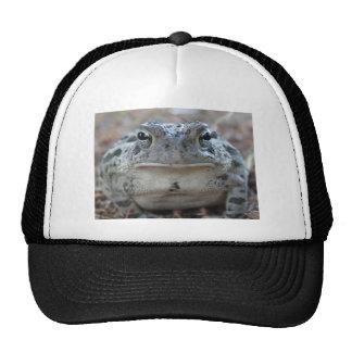 Case Savvy iPad Mini Glossy Finish Case Trucker Hat