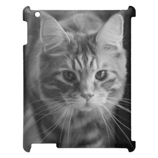 Case Savvy Matte Ipad Case Maine Coon