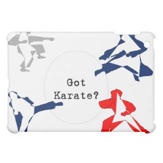case speck ipad iphone martial arts capoeira karat case for the iPad mini