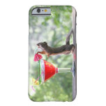 caseiPhone 6 caseiPhone 6 caseSquirrel Drinking a  iPhone 6 Case